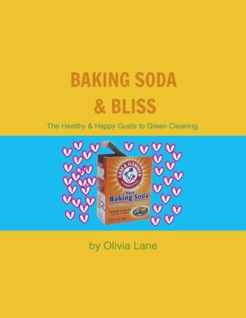 baking+soda+and+bliss+bookcover+495+x++641